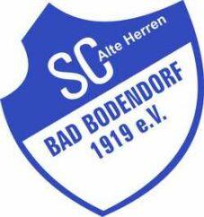 SCB Logo AH