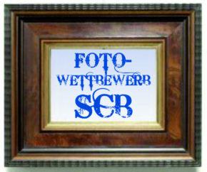 Logo Fotowettbewerb 131118